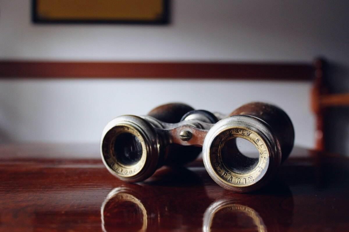 vintage brown binoculars